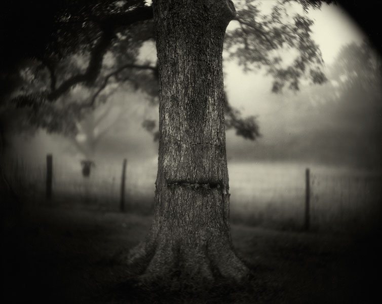 sally_mann_deep_south_04